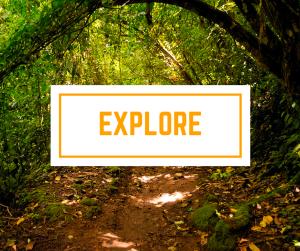Explore-st-maarten