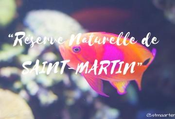 reserve naturelle st martin-page-001