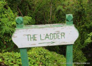 the-ladder-saba