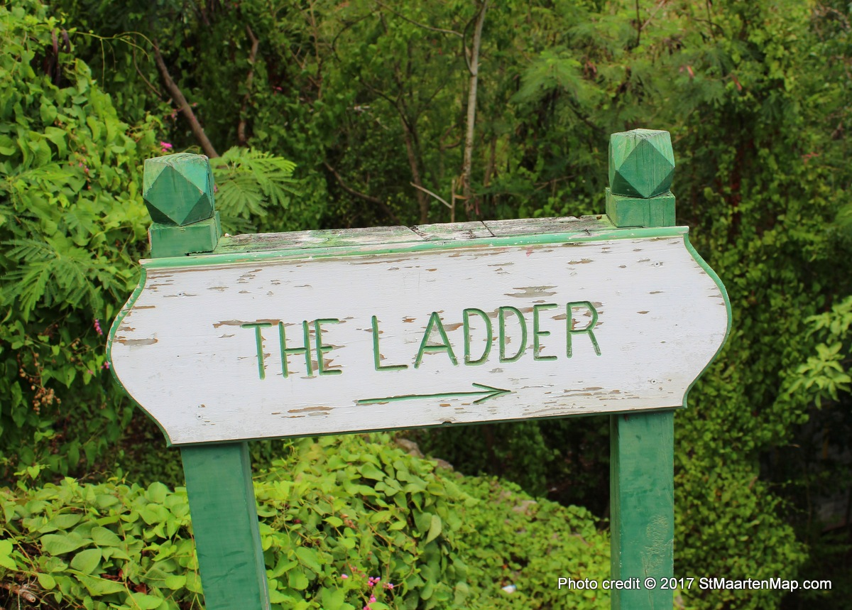 the-ladder-saba